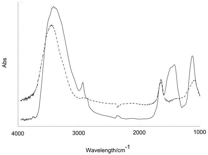 Figure 3: IR spectrum of lyophilized IFW sample (black line). The broken line is the spectrum obtained preparing the pellet with milli-Q water (see text).