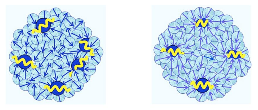 Figure 3 a-b: Schematic pictures of, respectively, CDplasma, and IPDplasma and their internal structures. Blue balls symbolizes solute molecules, with their yellow cosine curves symbolizing their plasma oscillations. For IPDplasma these oscillations are in-phase, for CDplasma these are just coherent. Light-blue colored balls symbolize polar solvent molecules. Their blue arrows symbolize their electric dipole moments. In IPDplasma these dipoles are spherically symmetric oriented around their nearest neighbor solute molecule. In CDplasma only the dipoles of H2O constituting the hydration shell are spherically symmetric oriented; all non-hydration shell solvent molecules are oriented randomly.
